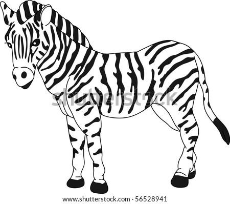 Cartoon Illustration Outline Vector Zebra Stock Photos