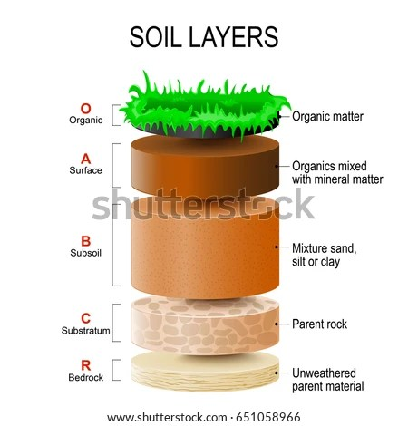 labelled diagram of soil profile how to make a vector layers stock images, royalty-free images & vectors | shutterstock