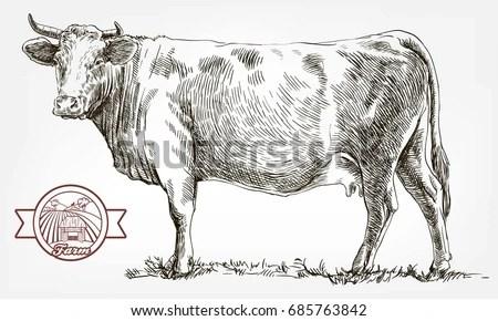 Hand Drawn Pig Sketch Vector Illustration 스톡 벡터 542713936