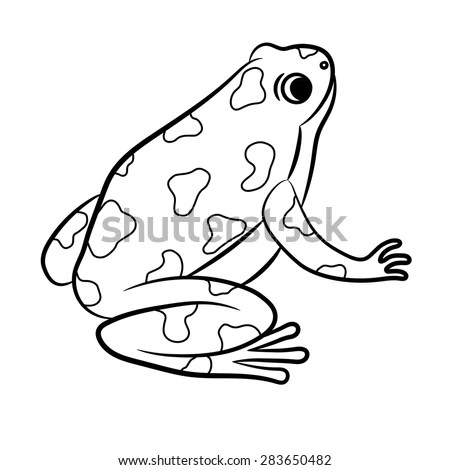 Cartoon Frog Illustration Outline Vector Stock Photos