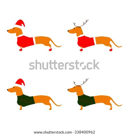sausage dog stock royalty-free