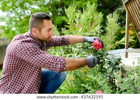 handsome young man gardener landscaping