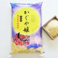 【ふるさと納税】東松島市特産 天授のお米『かぐや姫』