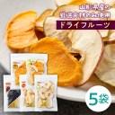 【ふるさと納税】《桜井物産》ドライフルーツ[果味ごこち]詰合