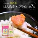 【ふるさと納税】無洗米はえぬき5kg・無洗米つや姫2kg 合