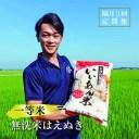 【ふるさと納税】≪隔月定期便≫一等米 無洗米はえぬき 5kg