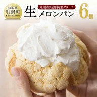 【ふるさと納税】「押川春月堂」人気の生メロンパン6個セット