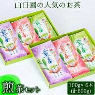 【ふるさと納税】山口園の一番人気!小さいお茶屋の煎茶セット(