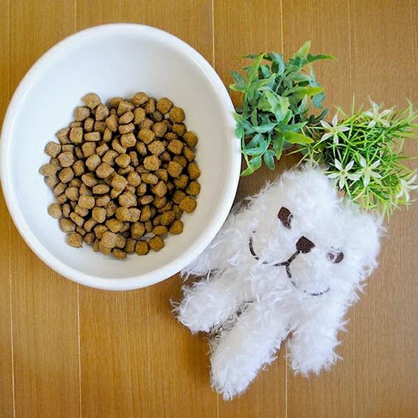 【ロイヤルカナン】【あす楽】ロイヤルカナン ダックスフンド専用 成犬用 生後10ヵ月齢以上 3kg
