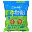 『売切れ御免』『賞味期限:21.03.02以降』 サラヤ Gains 匠の塩飴 マスカット味 750g