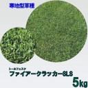 種子 トールフェスク ファイアークラッカーSLS 5kg
