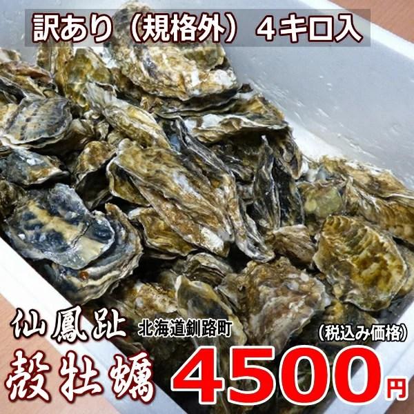 牡蠣70個前後/訳あり/ハネ/北海道/釧路町仙鳳趾/生牡蠣