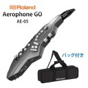 Roland(ローランド) / Aerophone GO (AE-05) - エアロフォン / ウィンド・シンセサイザー -