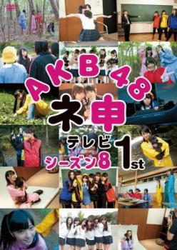 AKB48 ネ申テレビ シーズン8 1st【その他、ドキュメンタリー 中古 DVD】メール便可 レンタル落ち