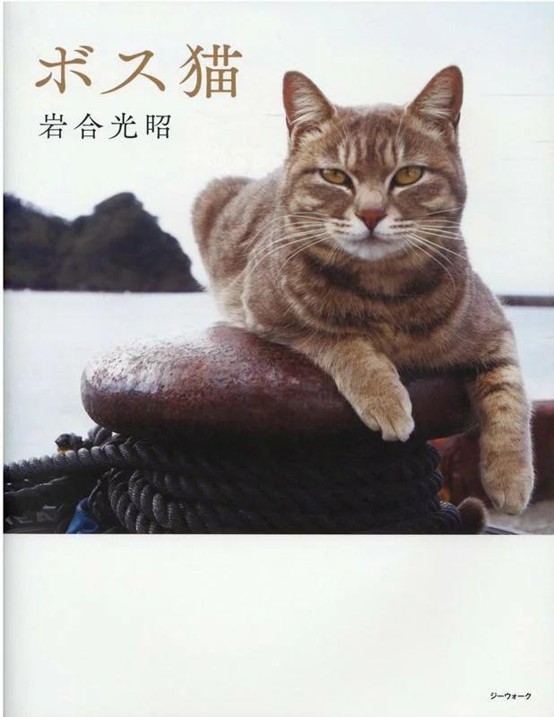 ボス猫 [ 岩合光昭 ]