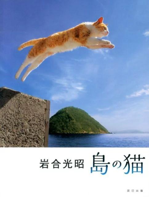島の猫 [ 岩合光昭 ]