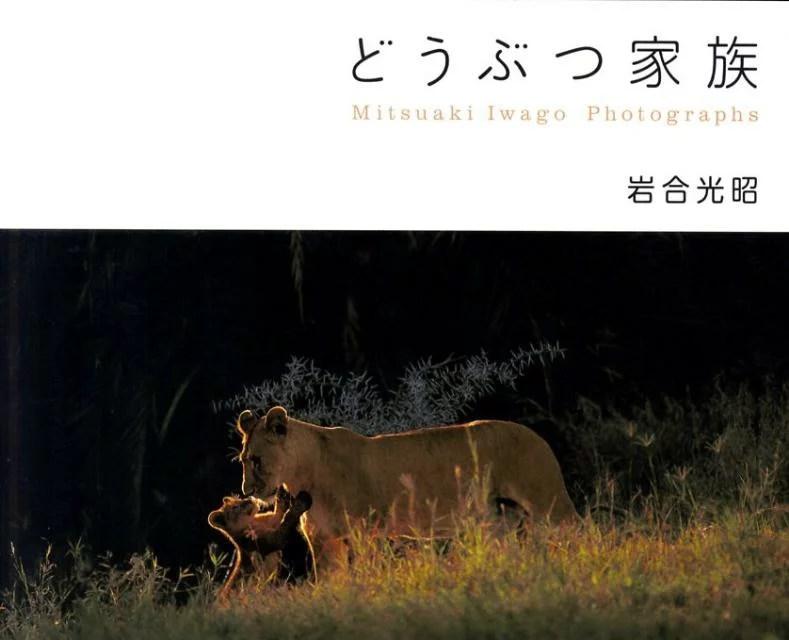 どうぶつ家族 Mitsuaki Iwago Photograph [ 岩合光昭
