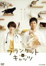 【中古】 ブランケット・キャッツ DVD−BOX /西島秀俊,吉瀬美智子,島崎遥