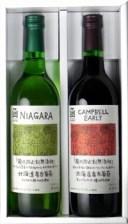 酸化防止剤無添加ワイン 720ml 赤・白 2本セット(キャ