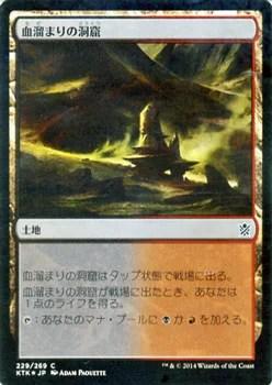 マジック:ザ・ギャザリング 血溜まりの洞窟 フォイル Foil タルキール覇王譚