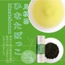 緑茶/【 足柄茶 ひなたぼっこ 30g 】/煎茶/お茶/国産/日本茶/緑茶/神奈川県/