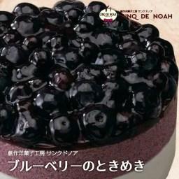 ブルーベリーのときめき サンクドノア ケーキ 12cm【アン