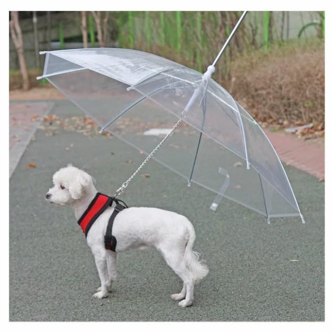パピア犬用傘付きリード PUPPIA パピア 犬 犬用 ペット ドッグ ペット ペットグッズ 雨 雨具