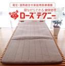 京都西川 ローズテクニー (日本製)(JNR-1003(SGI) (90cm×200cm)