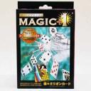 ディーピーグループ MAGIC+1 楽々ミリオンカード【smtb-s】