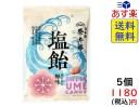 榮太樓總本舗 塩飴ほんのり梅味 80g×5袋 賞味期限2021/06