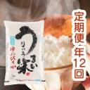 【ふるさと納税】[R01AT08]令和元年産うりゅう米「ゆめ