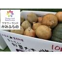 【ふるさと納税】かみふらの産秋野菜(じゃがいも・玉葱・かぼち