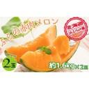 【ふるさと納税】JAふらの厳選!約1.6kg×2玉【上富良野