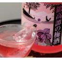 【ふるさと納税】しそ焼酎 鍛高譚(たんたかたん)の梅酒[72