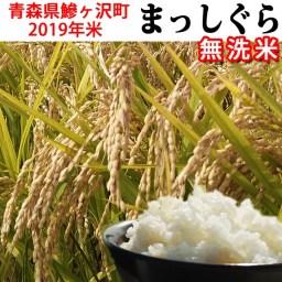 【ふるさと納税】2019年産米 まっしぐら〔無洗米〕(5kg