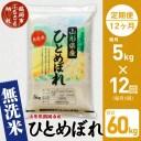 【ふるさと納税】 令和2年産 無洗米 ひとめぼれ 【12ヶ月