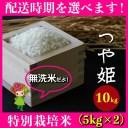 【ふるさと納税】 米 10kg 5kg×2 つや姫 特別栽培