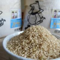 【ふるさと納税】☆合鴨農法完全無農薬米「愛鴨米」〈玄米〉3k
