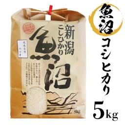 【ふるさと納税】1-422【H30年産】新潟県魚沼産(長岡川