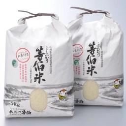 【ふるさと納税】等伯米こしひかり10kg(5kg×2袋)/世