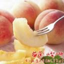 【ふるさと納税】厳選!山梨の桃 4〜6玉(約1.5kg入り)