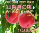 【ふるさと納税】 桃 山梨県産 約1.8kg 約6〜8玉入り