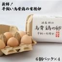 【ふるさと納税】新鮮!平飼い烏骨鶏の有精卵 (6個パック×4