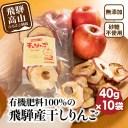 【ふるさと納税】山本果樹園 干しりんご 40g入り 10袋