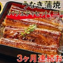 【ふるさと納税】うなぎ蒲焼バラエティセット(三河産)【3ケ月