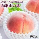 【ふるさと納税】【産直・人気の特産品】和歌山の桃 約2kg・