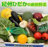 【ふるさと納税】紀州の野菜・果物セット(15〜20品目詰め合