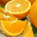 【ふるさと納税】バレンシアオレンジ[約5kg]湯浅町田村産(