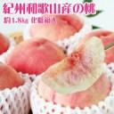 【ふるさと納税】紀州和歌山産の桃 約1.8kg 化粧箱入 ※