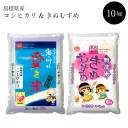 【ふるさと納税】米 BG無洗米 きぬむすめ コシヒカリ 10